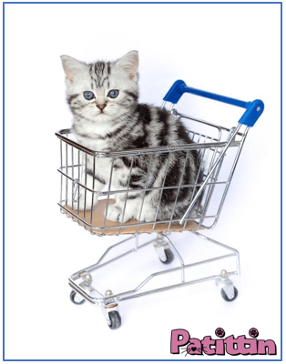 Kedim için alışveriş listesi .